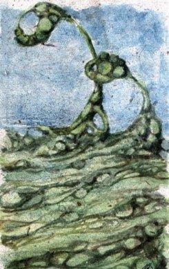 Book Cover, Aquarell